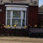 Yellow flowers on house